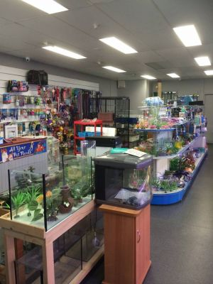 Nambour Pet Shop - tourismnoosa.com
