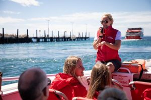 Rottnest Island Tour from Perth or Fremantle including Adventure Speed Boat Ride - tourismnoosa.com