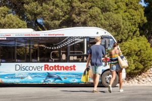 Rottnest Island Tour from Perth or Fremantle including Bus Tour - tourismnoosa.com